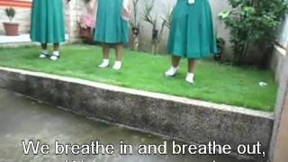 Respiratory System Jingle