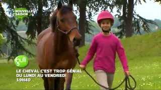 INEDIT : Le Cheval c