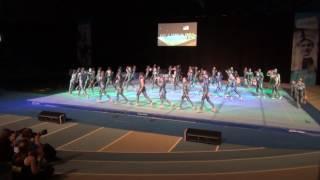 Baixar Animale - BSTF 2017 - TOM