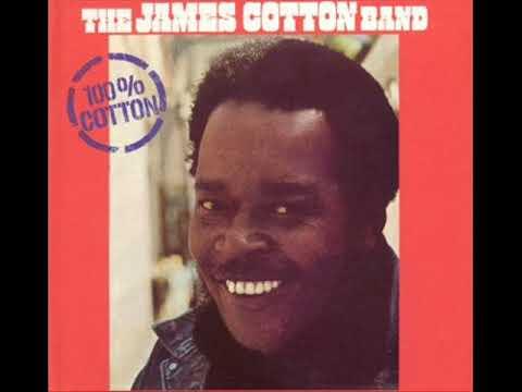 All Walks Of Life ,  The James Cotton Band