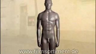 Schulfilm: WAS IST WAS - KÖRPER UND GEHIRN (DVD / Vorschau)