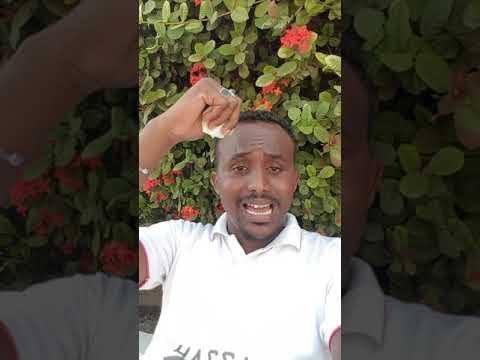 Djibouti VS somaliland karbaash