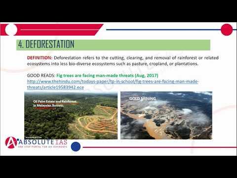 Terrestrial Ecosystem (Part 2) | Environment & Ecology | IAS
