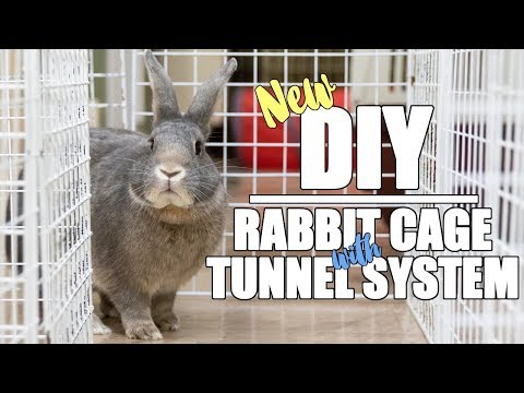 NEW DIY RABBIT CAGE WITH TUNNEL SYSTEM