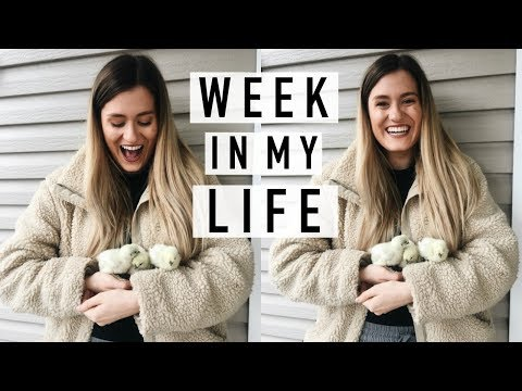 A WEEK IN MY LIFE | Michelle and Aline Vlogs