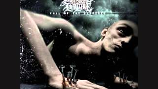 Severe Torture - Sawn Off