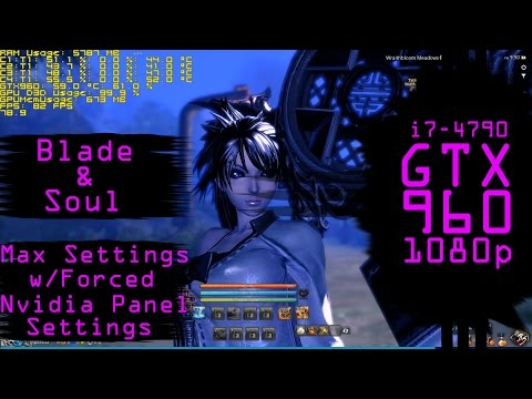 Blade & Soul Max Settings with Nvidia Panel Forced settings