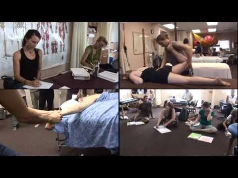 Maui School of Therapeutic Massage: Introduction