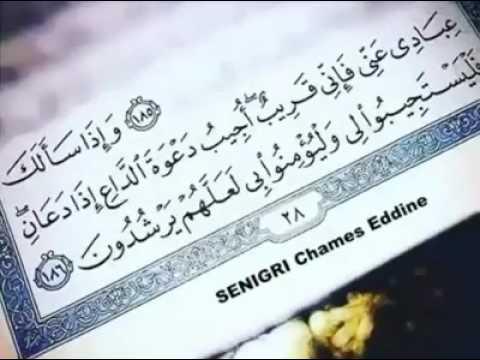 ''و إذا سألك عبادي عني فإني قريب أجيب دعوة الداعي إذا دعاني فليستجيبوا لي ولؤمنوا بي لعلهم يرشدون ''