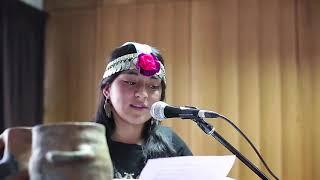 Arica Nativa Wawa 2019   Hacia la Interculturalidad (Chile)