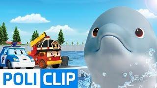 My friend the dolphin, mingming | Robocar Poli Clips