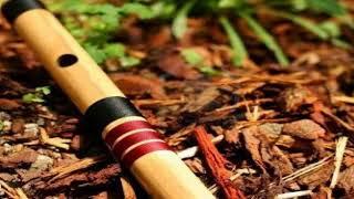Sabyan ya maulana (flute cover)