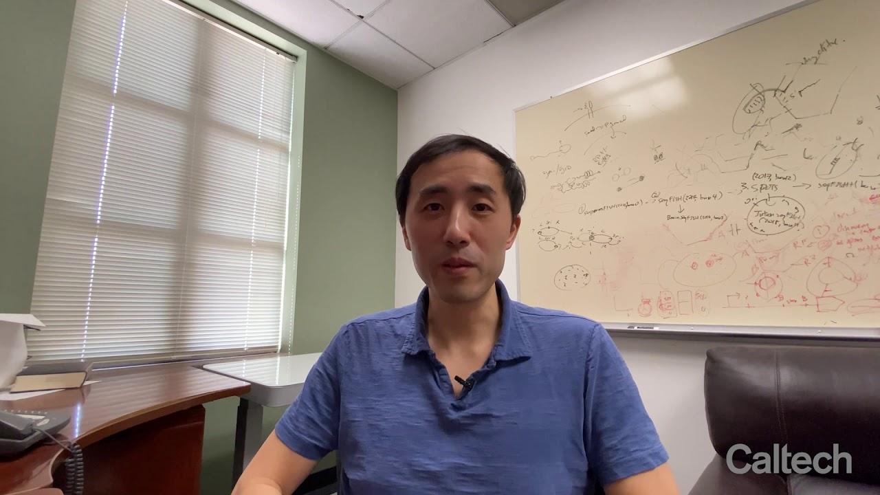 The Caltech Effect: Long Cai on Michael Elowitz, Viviana Gradinaru, Mitch Guttman and David Anderson