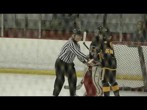 Golden Wolves - Palm Beach Hawks  U18 AA   11/02/2019
