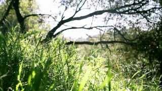 M83 - Midnight City (Eric Prydz Private Remix) - HD Video