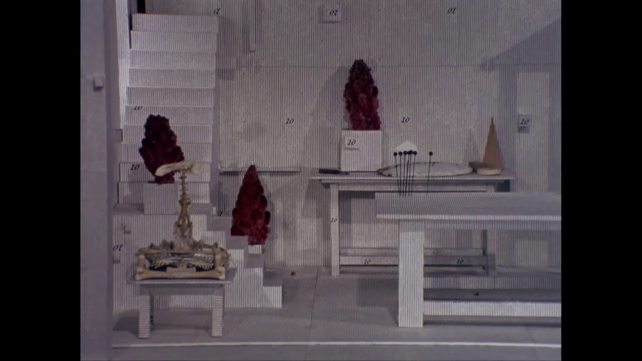 Download The Cabinet of Jan Svankmajer, 1984, The Brother Quay