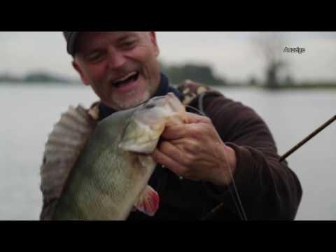 Westin - MiniTeez vs. Baitfish by Dietmar Isaiasch (German speaking)