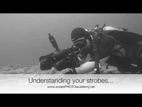 3 Days Underwater Photography Course With Tim At Anilao PHOTO Academy...