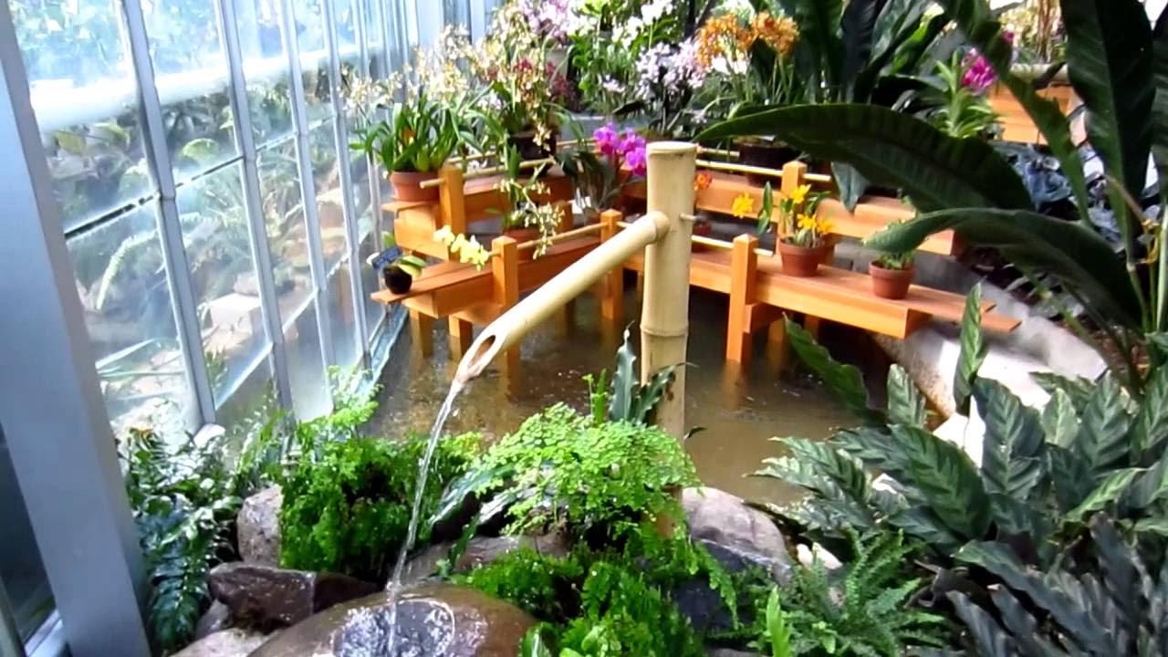 create natural garden with indoor