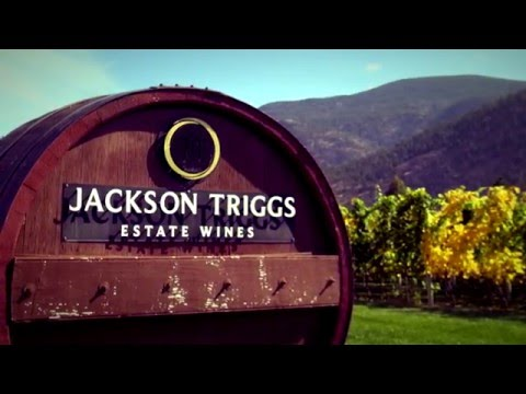 Experience Jackson-Triggs | Great Estates Okanagan