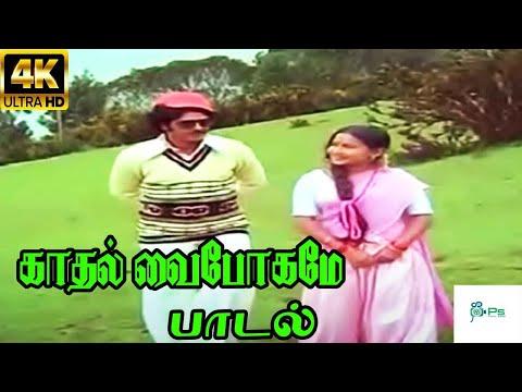 Kadhal Vaibhogame || காதல் வைபோகமே காணும் || Malaysia Vasudevan, S. Janaki || Love Duet H D Song