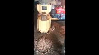 Small Wood Pellet Mill/sawdust Pellet Machine For House Use