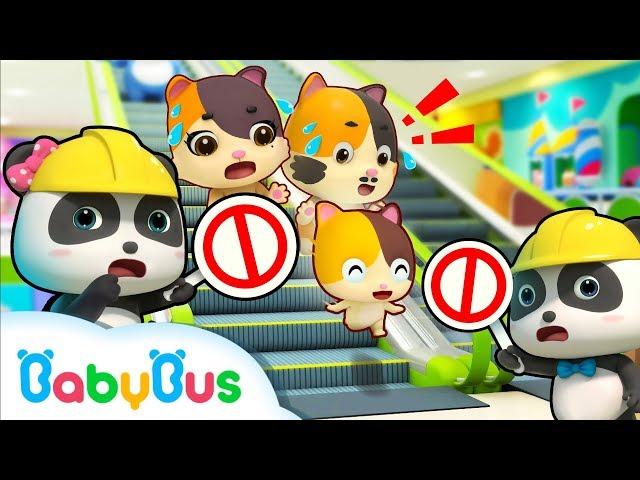 Baby Kitten, Be Careful on the Escalator | Kitten Family | Kids Safety Tips | Kids Song | BabyBus