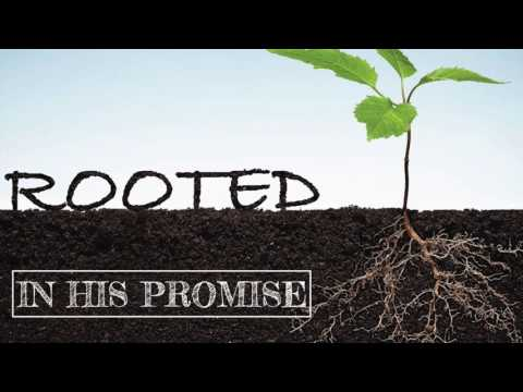 Rooted In His Promise - Paul Schofield | Sunday 16th July 2017