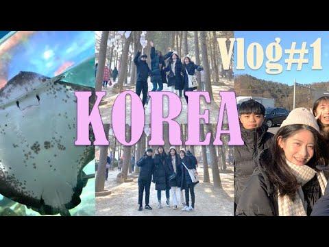 韓國ep.1 | 5天4夜出包自由行 gogo|vlog4