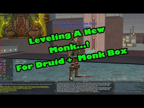 Everquest Classic: Druid And Monk Box, (Leveling New Monk) - YT