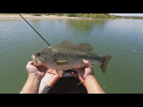 Aurora Reservoir 4 Pounder Bass