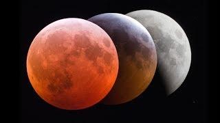 Total Lunar Eclipse (Jan. 20/21, 2019) Time Lapse