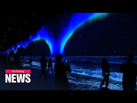 Immersive media art exhibition 'Arte Museum' on Jeju Island mesmerizes visitors