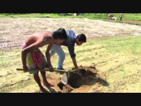 How to do Soil Testing. (Language Bangla)