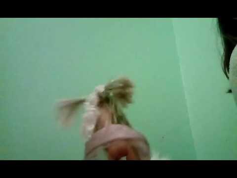 Barbie Esquadrão Suicida EP1