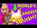 World's Largest Squishy!!!  Smooshy Mushy Toys