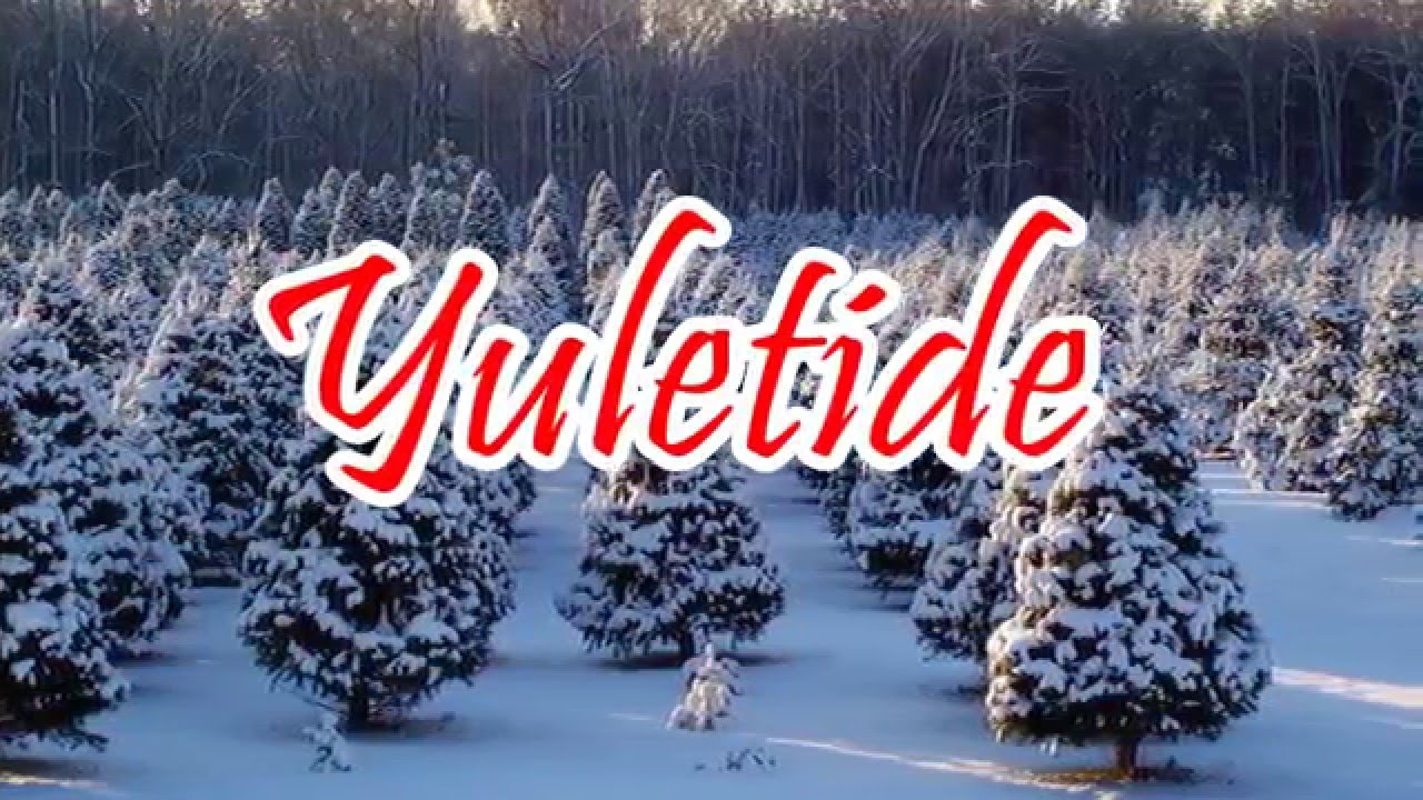 Yuletide Tree Farm - Quality Christmas Trees - YouTube