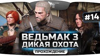 Прохождение Ведьмак 3: Дикая Охота #14. Возвращение в Велен и Новиград.