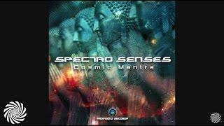 Spectro Senses - Cosmic Mantra
