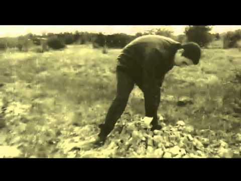 David Guetta   Shot Me Down ft  Skylar Grey   360p