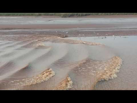 Highest Tide comming in Truro, Nova Scotia