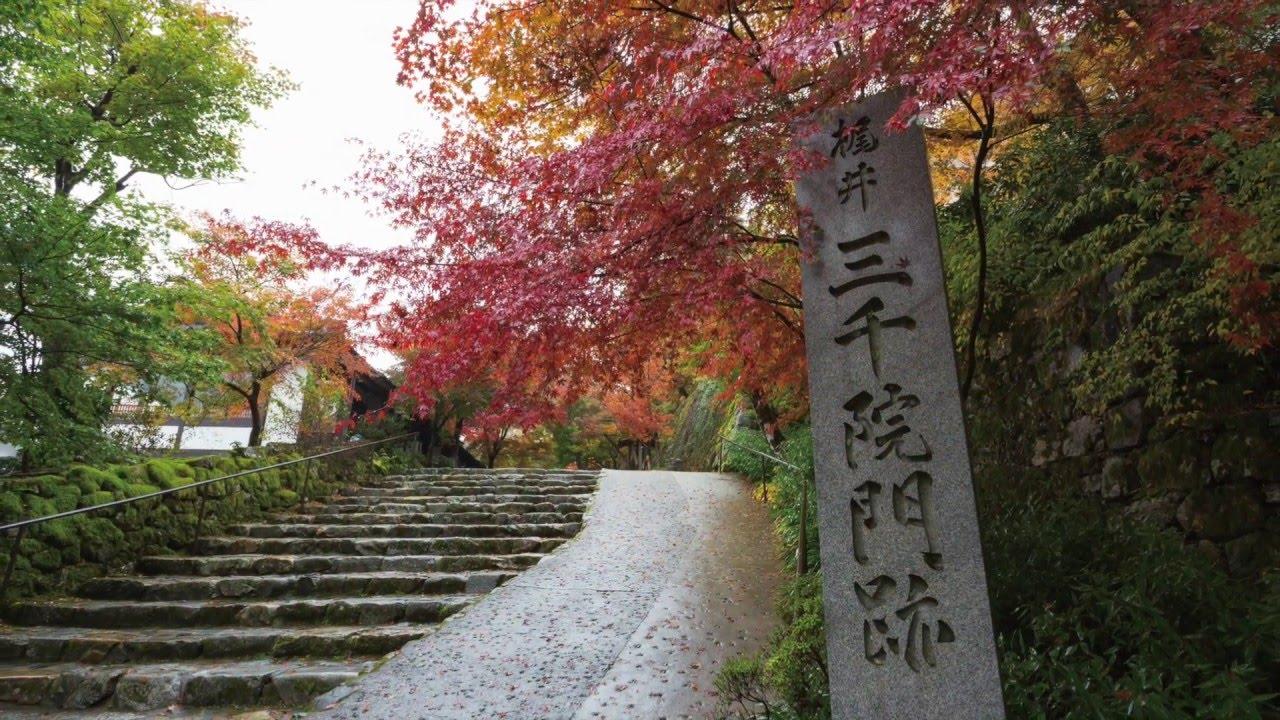 京都 大原 学院
