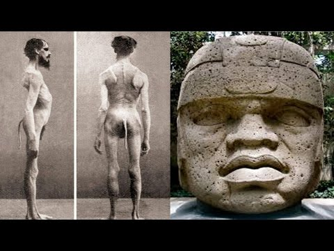 OLMEC HEADS DECODED