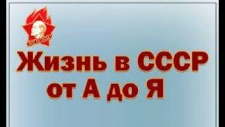 Жизнь в СССР Общепит Дайте жалобную книгу