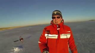 Озеро Песчаное 2020 Челябинская Курганская область