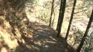 B037【世界遺産】熊野古道・中辺路-5<距離道標4~高原熊野神社>