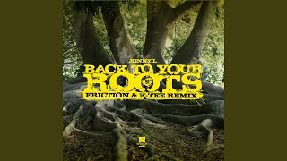 Back to Your Roots (Instrumental) (Friction & K-Tee Remix)