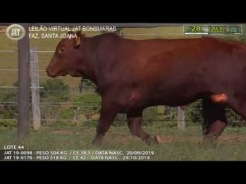 LOTE 044
