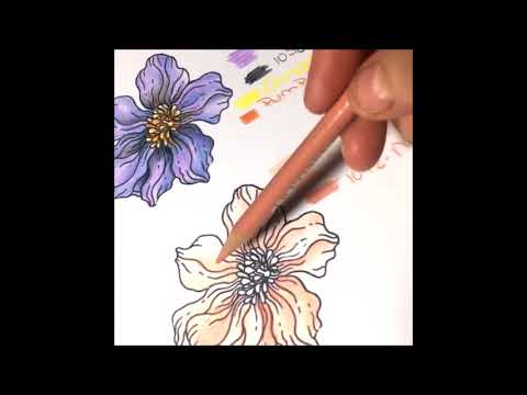 coloring-flowers-for-adult-coloring-books-2-peach-colored-flower-lisa-brando-extreme-coloring