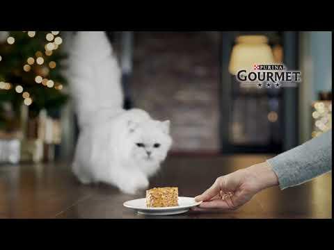 Αυτές οι Γιορτές θα είναι για όλους... Gourmet | PURINA® Greece
